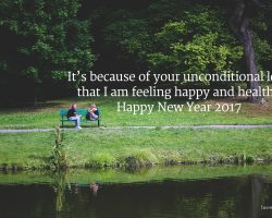 Best New Year Wishes for Wife 2017 29