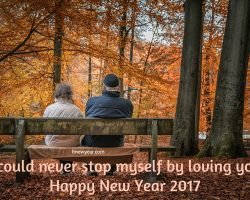 Best New Year Wishes for Wife 2017