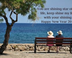Best New Year Wishes for Wife 2017 45