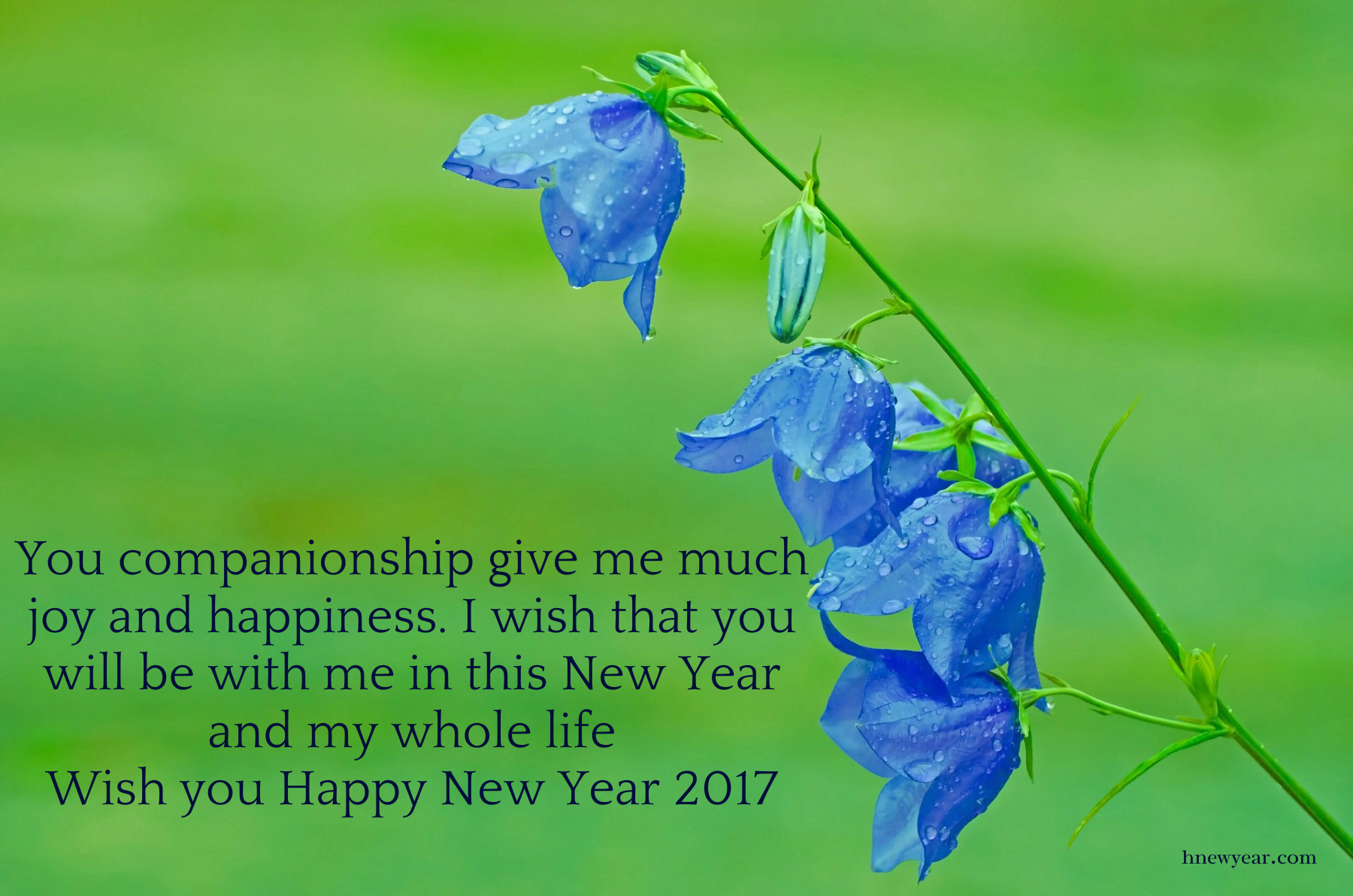 New Year Wishes 2017 For Someone Special 21