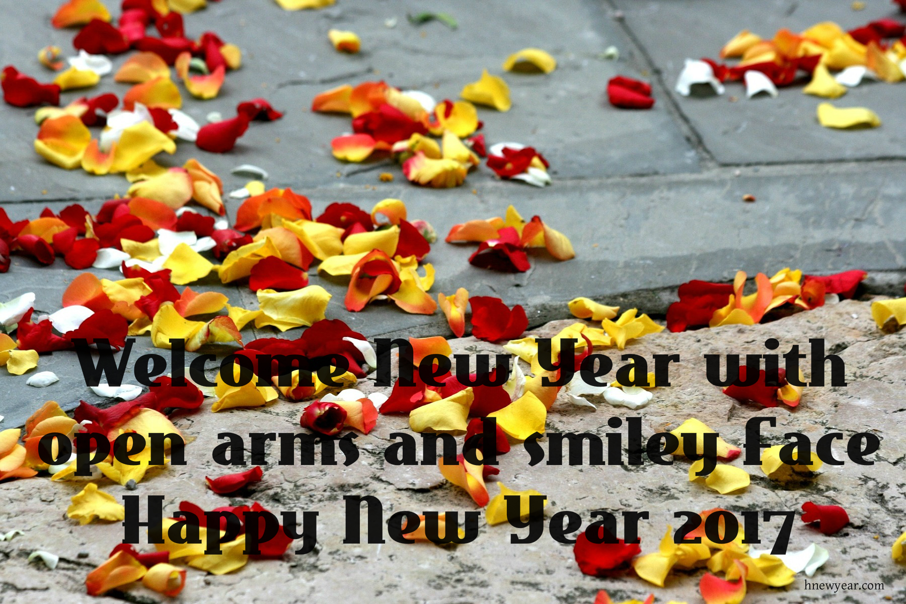 New Year Wishes For Someone Special 28 Images 50 Touching New Year