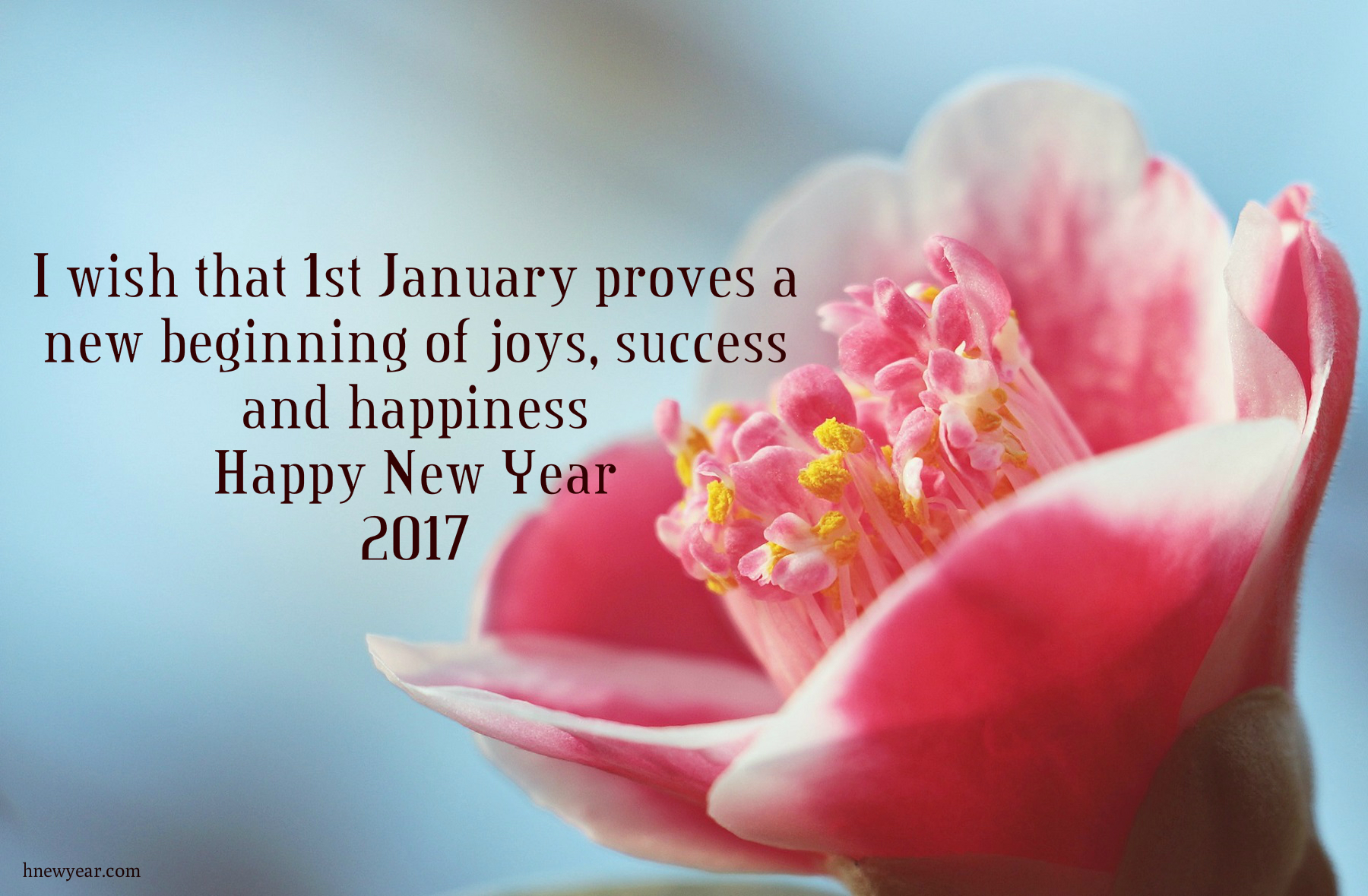 New Year Wishes 2017 For Someone Special 6