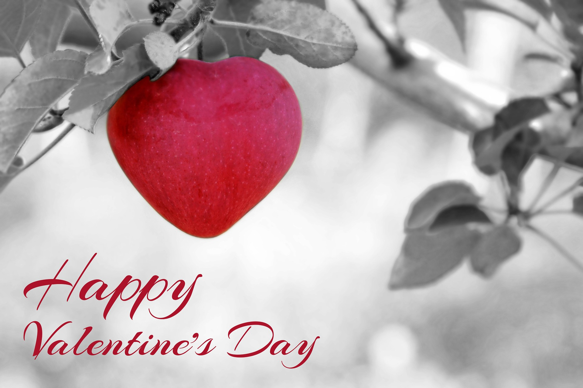 50 Best Valentine S Day Wishes 2017 Sms Messages Greetings