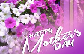 Mother's Day Flowers - Send Best Flowers to MOM with Wishes on Mother's Day